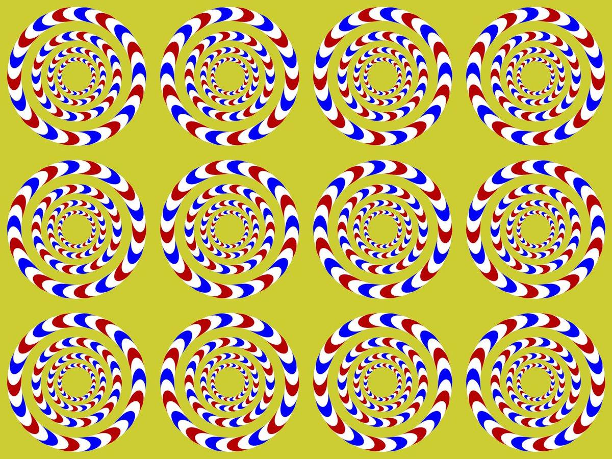 тебя картинка иллюзия змеи зависит исключительно