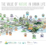 Image for the Tweet beginning: #CitiesWithNature are life-supporting & -enhancing.
