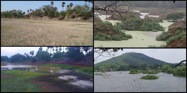 lake revival Chennai