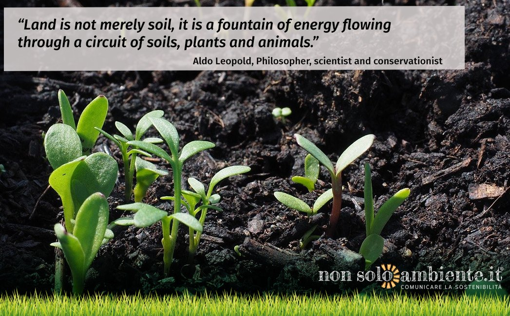 #WorldSoilDay