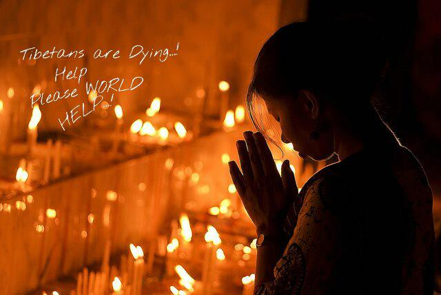 If our tears do not lead us to act then we have lost the reason of our humanity, which is compassion. H H #DalaiLama #Tibet