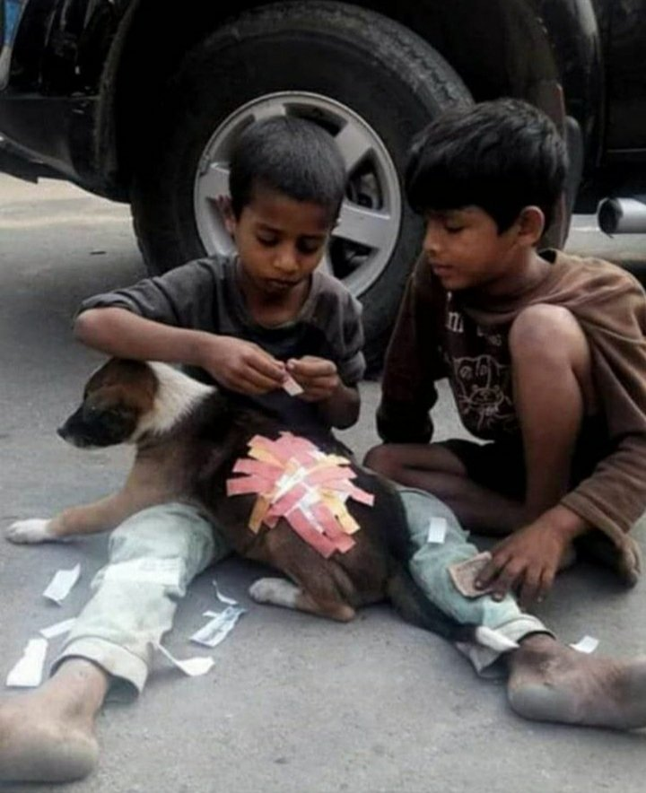 Found this pic today.. #MajorThrowback to the time when I tried putting a band-aid as a kid and it wudn't hold on.. used to wonder why only dogs had fur and I didn't. Lol but these guys have taken it to a whole new level.. lol.. #Kids #innocence #compassion
