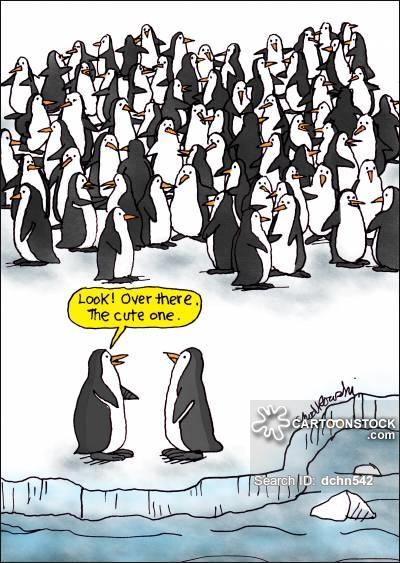 The look of love. #cartoon #cartoons #Antarctica #penguin #worldpenguinday #love #romance #romancehumor #funnypenguin #penguindoodle #penguincartoon