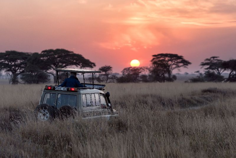 What are my #gapyear options? 🌍 -  #wanderlust #africa #travel #travelbloggers