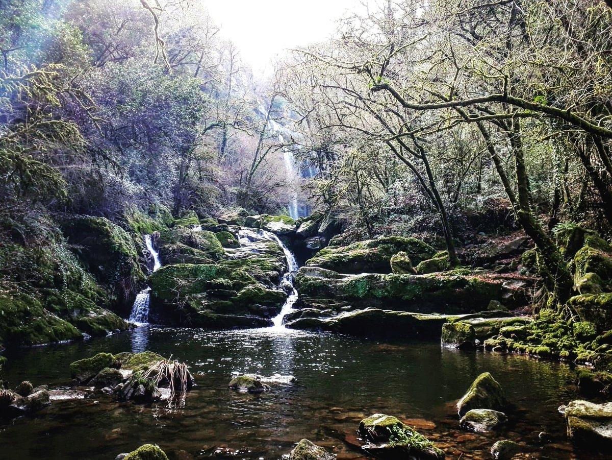トシャの滝 (silleda)   #風景 #森 #川 #トシャの滝  #silleda #pontevedra #fervenzadotoxa #galicia #自然 #スペイン