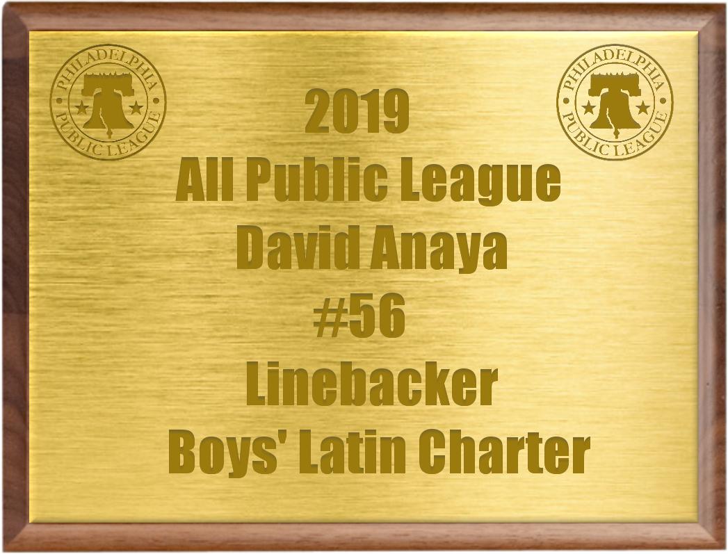 2019 Philadelphia All-Public League: David Anaya, Boys' Latin Charter  @CoachPat71  @DavidAnaya_BL