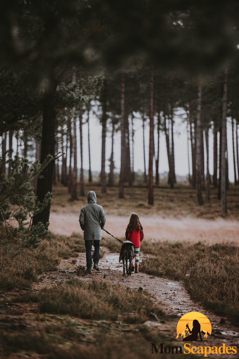 """It is never too late to be who you might have been""-George Eliot . Escapades for Single Moms exploring nature . @mommyneedsvodka @iamjhud @michelleobama @theellenshow @sophiavergara @charlizetheron @gayleking . #travelling #travelingmom #vacation #momlife #singlemom #moms #trip"