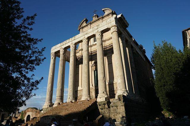 Foro Romano #travel #traveling #vacation #visiting #instatravel #instago #instagood #trip #holiday #photooftheday #fun #travelling #tourism #tourist #instapassport #instatraveling #mytravelgram #travelgram #travelingram #igtravel #roma #rome #italia #ita…