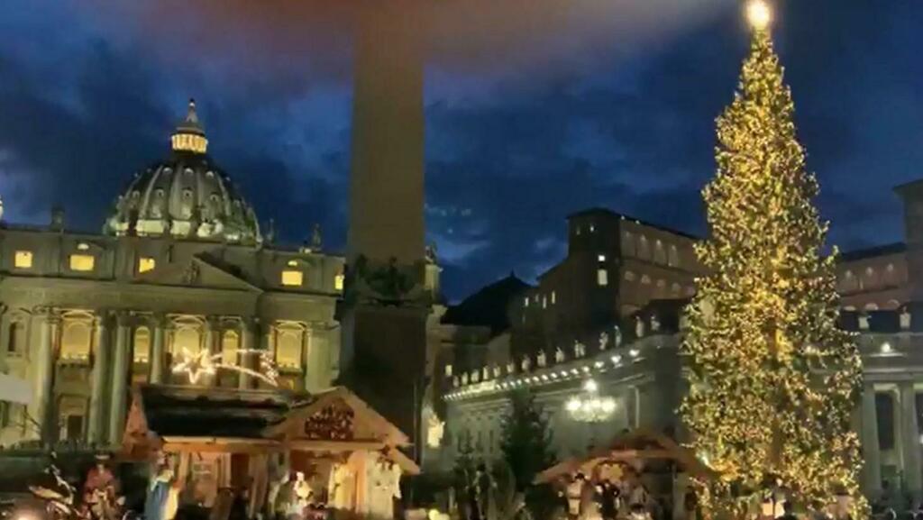 San Pietro, acceso l'albero e inaugurato il Presep...