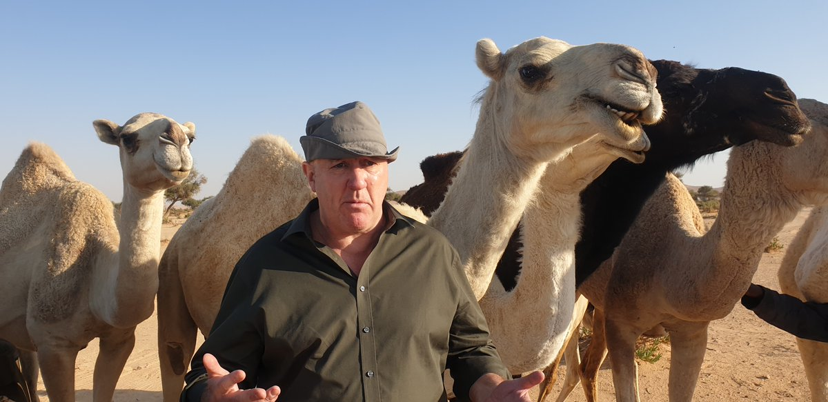 No media events for Anthony Joshua and Andy Ruiz today.So Costello & @bigdaddybunce did the logical thing - went out into the desert to rewatch the first fight 🐪Latest podcast ⬇️🎧🥊: http://bbc.in/2PlHjXa