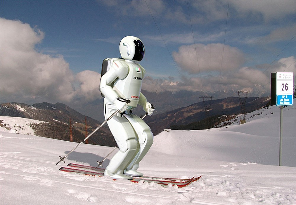 Картинка горные лыжи прикол