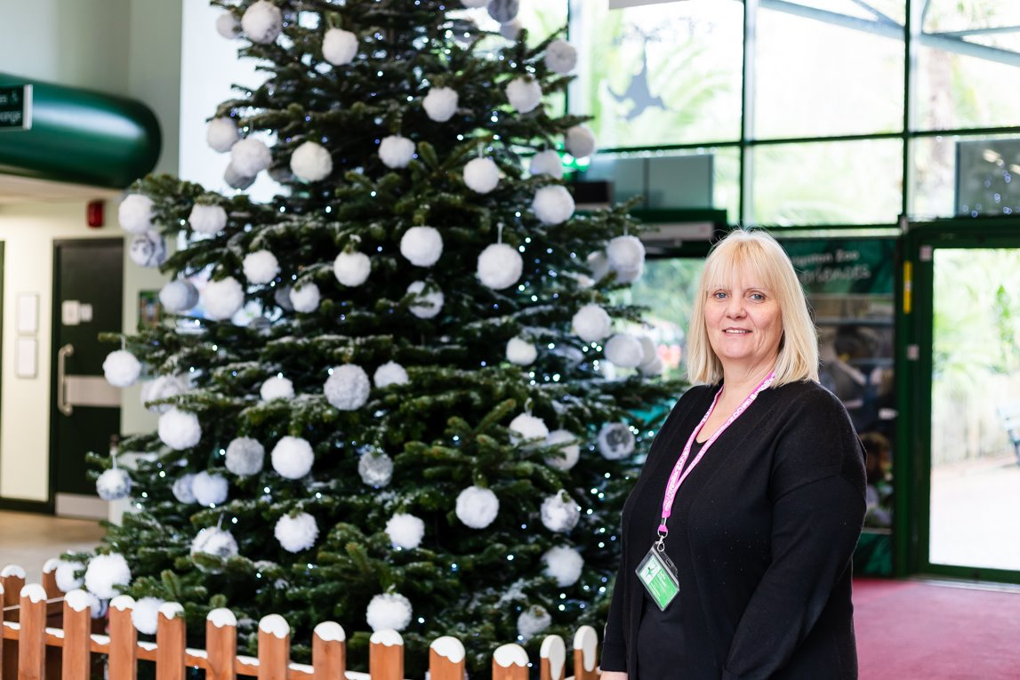 Paignton Zoo On Twitter Our 14ft Christmas Tree Is Looking Fantastically Festive At The Main Entrance Rather Than Use Traditional Baubles And Tinsel The Tree Is Decorated With Dozens Of Woollen