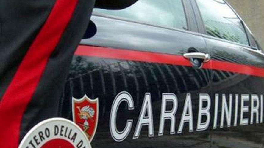 Treviso, aveva intestate centinaia di auto usate d...