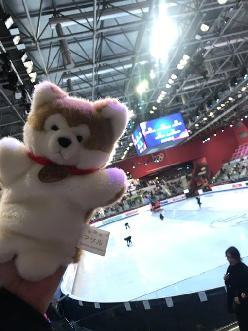 ISU Grand Prix of Figure Skating Final (Senior & Junior). Dec 05 - Dec 08, 2019.  Torino /ITA  - Страница 18 ELH-G1eWsAAVV7f?format=jpg&name=small