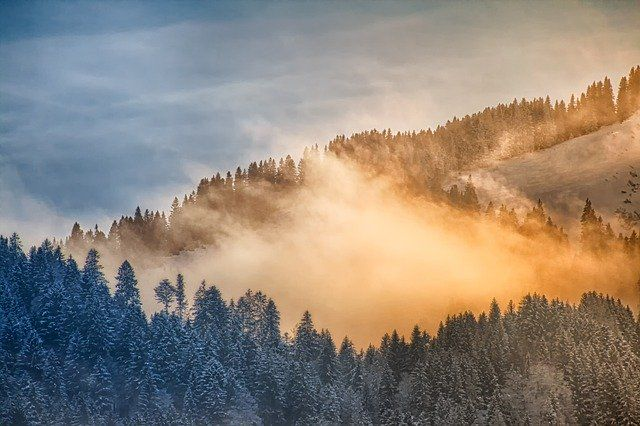 Foggy Winter Mountainsby analogicus  https://pixabay.com/p-3437545