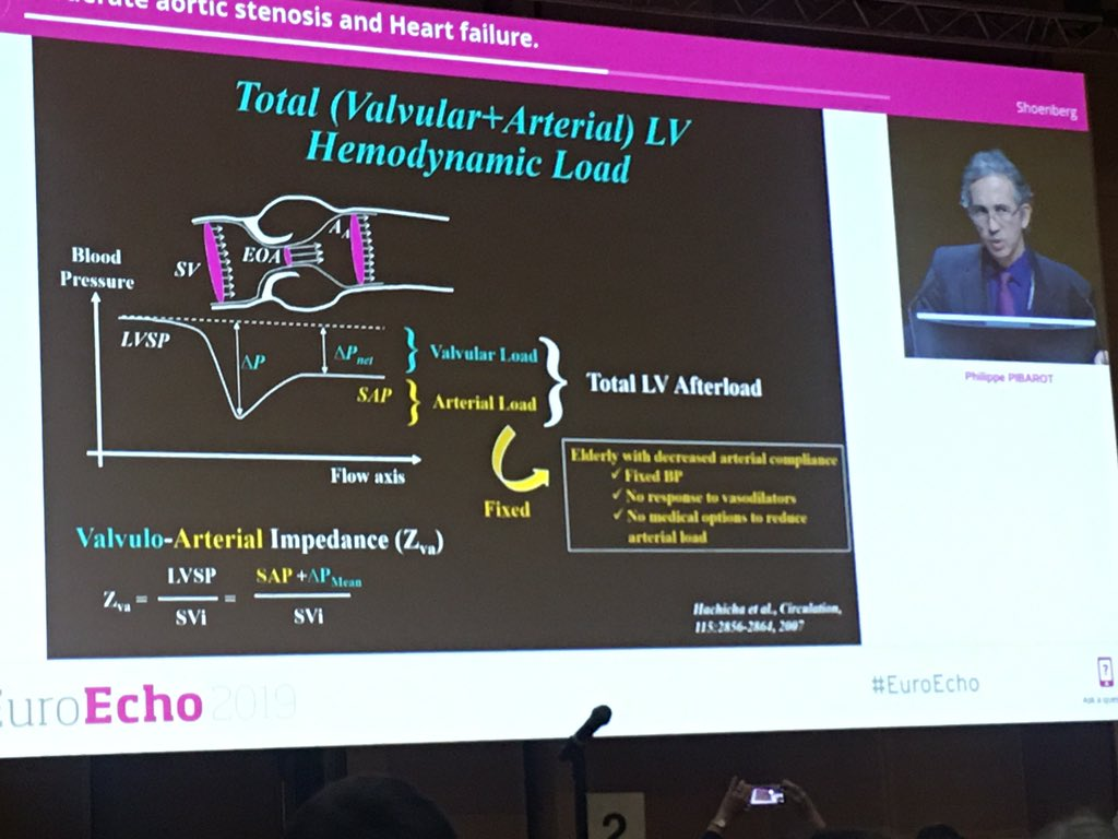 Great talk on moderate AS from @PPibarot at #euroecho2019