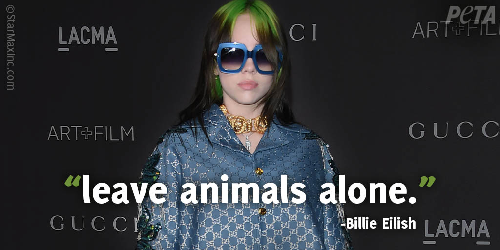 No one should be canceled for having a heart.  Vegan artist @billieeilish has previously spoken out about the cruel dairy industry and how sheep are mutilated for wool.  A dress made of dead bodies IS gross — anyone with a heart can see that. #BillieEilishIsOverParty <br>http://pic.twitter.com/g75LRgxb3W