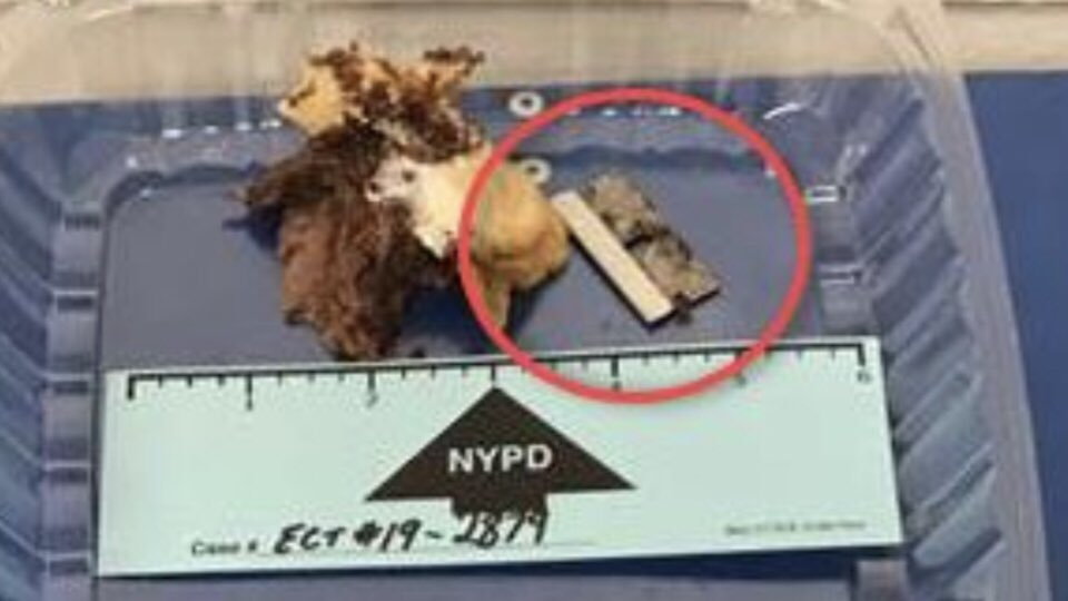 To repeat: The NYPD has ZERO tolerance for acts of violence against our police officers. A sandwich bought at a Queens deli on Thurs. contained a razor blade that cut the inside of a @NYPDCT cop's mouth. He'll be OK, but a full investigation into this abhorrent act is underway.