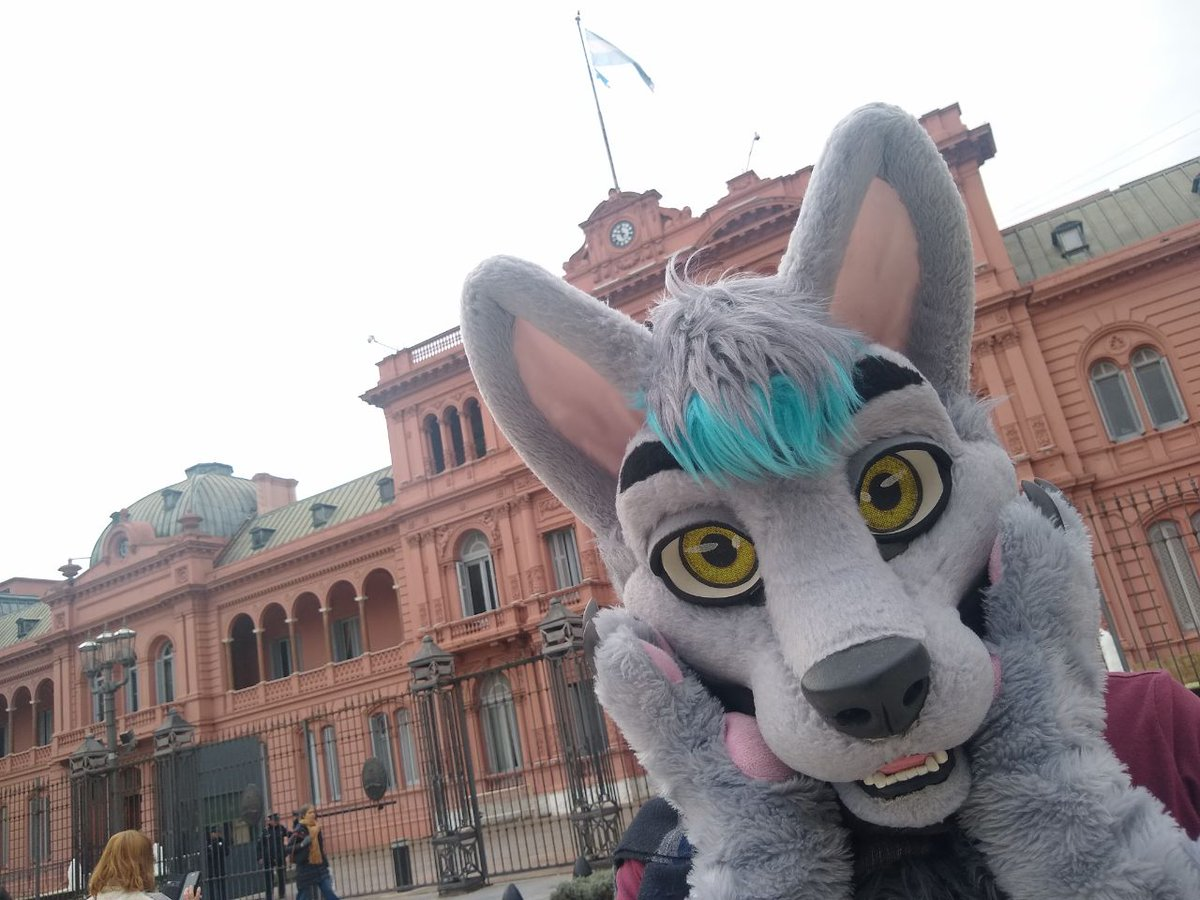 #FursuitFriday Argentina :D !!! The Pink Palace!