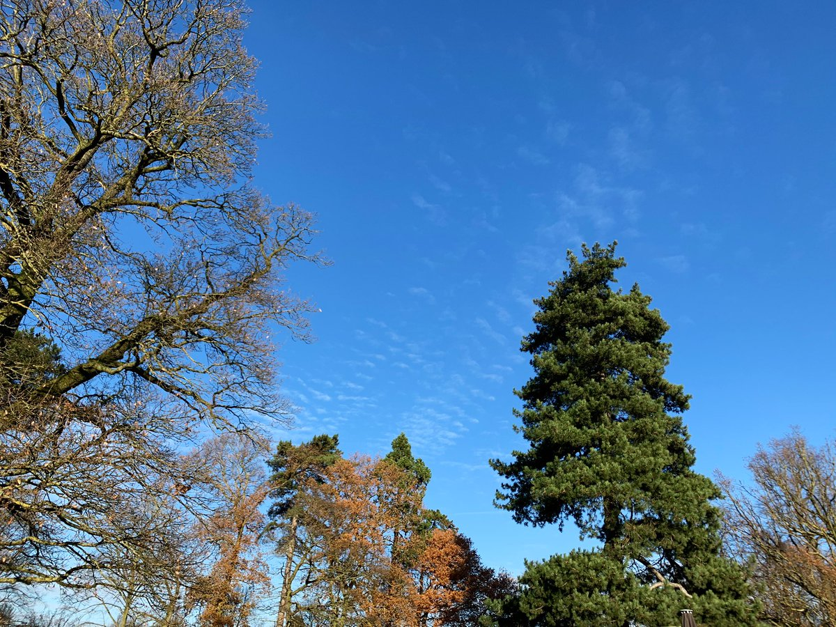 Mr. Blue Sky's up there waitin' #FridayVibes <br>http://pic.twitter.com/Kqyw6nQeJd