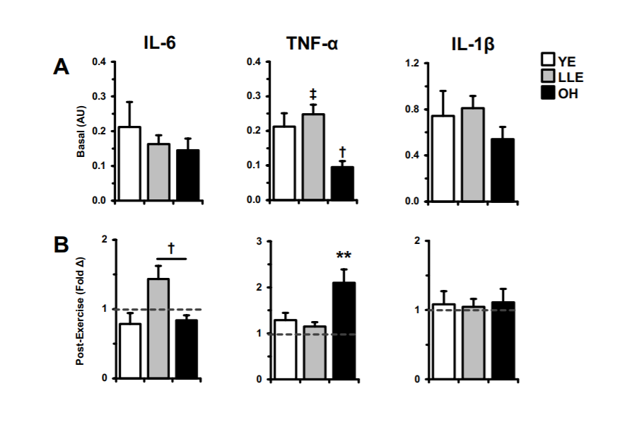 Beneficial Effects of Exercise on Age-Associated Inflammation - mailchi.mp/fdeaf4ffa2ed/r…