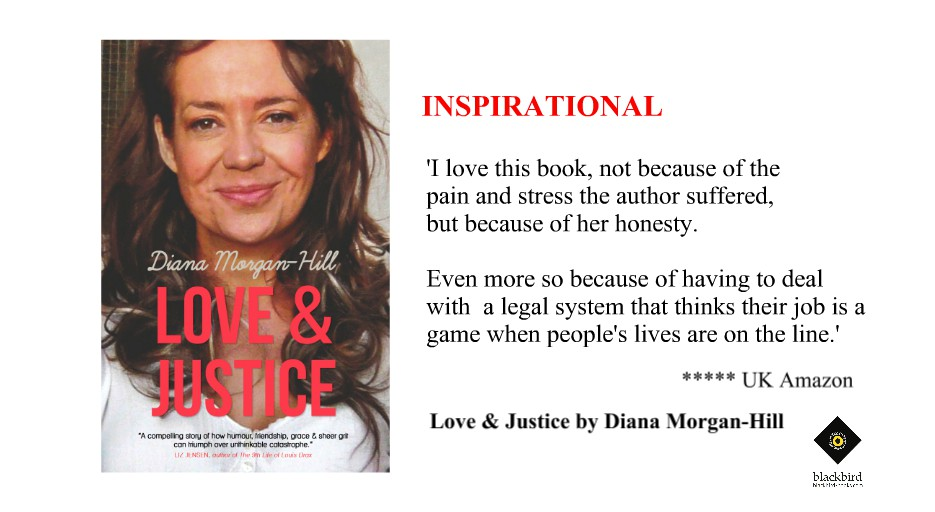Review of the Week: Love & Justice by Diana Morgan-Hillhttp://hyperurl.co/loveandjustice #books #legalsystem #women #disability #DisabilityDay2019