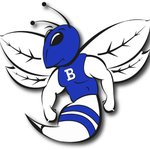 Image for the Tweet beginning: 7A STATE CHAMPIONS: Bryant Hornets