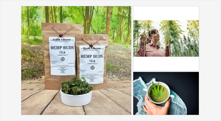 #HempBudsTea #Cannabissativa #hemp #hempbuds #hemptea #cannabistea #cbd #HealthEmbassy #herbs #herbsonline #herbsuk #vegan #vegetarian #organic #natural #naturaltea #organictea #healthytea #herbaltea #tea #infusion #hempinfusion #cannabisdrink #hempdrink https://healthembassy.co.uk/en/hemp-products/65-hemp-buds-tea-cannabis-sativa-l.html…