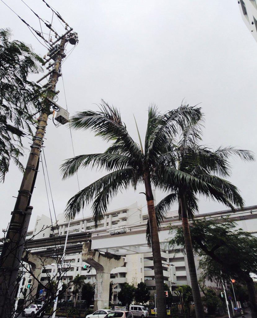 外は小雨になったようですが 風が強い那覇です🍃🌀🍃彡(-ω-;)彡🌀🍃 肌寒いうえに風が強いので体感気温はかなり下がります。  今日はウルトラライトダウン使おう〜💦  #沖縄 #沖縄旅行 #沖縄好き