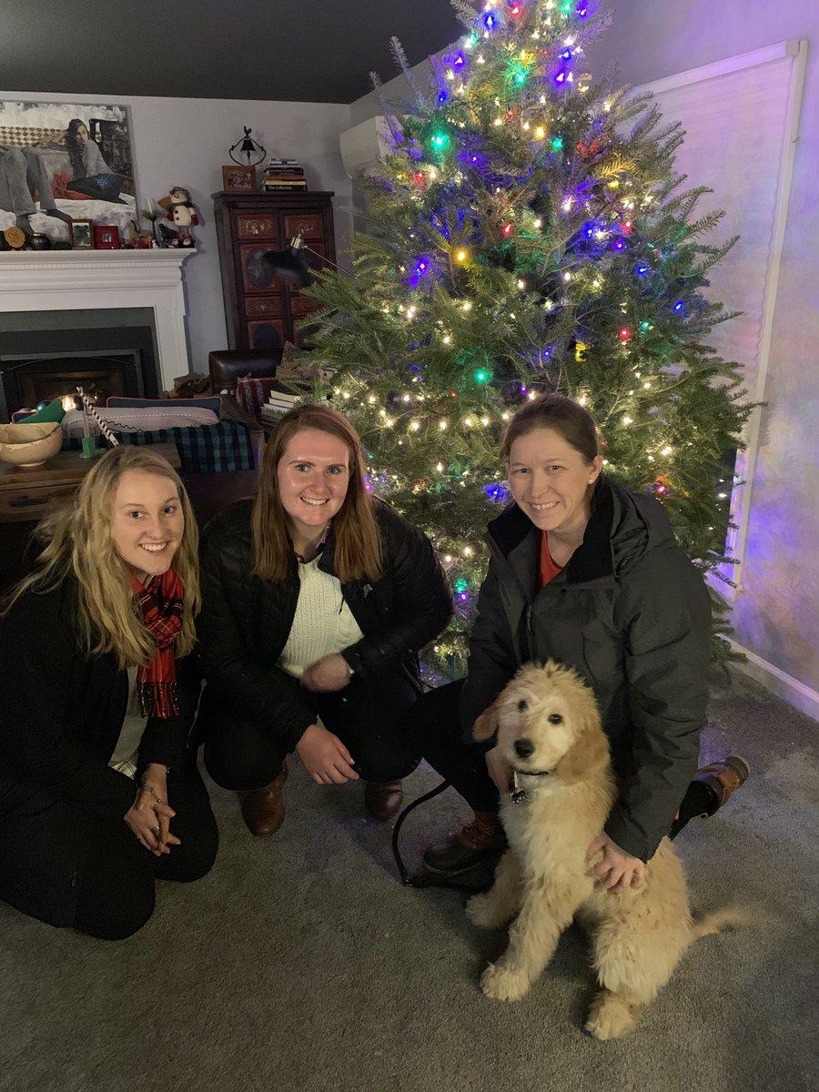 Santa's elves made an appearance tonight and delivered this beautiful Christmas tree 🌲 #gratitude #holidayseason #magic