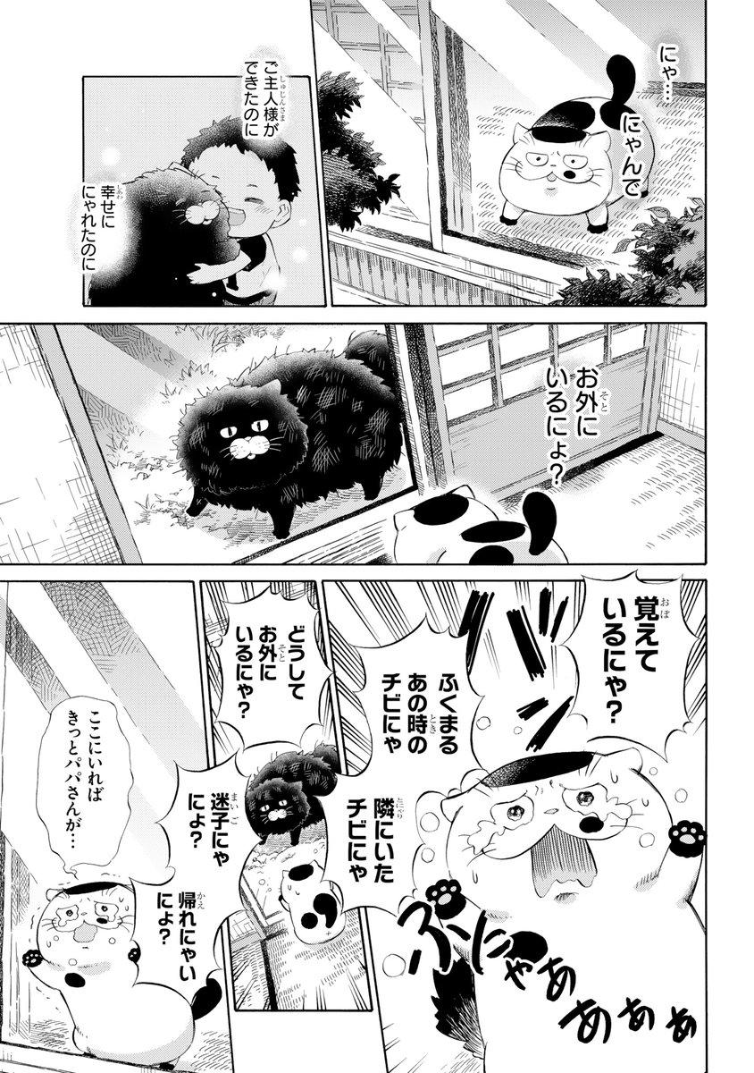 RT @sakurai_umi_: 【おじさまと猫 48話】 幸せの時間 本編の48話が更新しました! 続きはこちらです↓ https://t.co/J9HEbHGqXA https://t.co/b15TkFuL4K