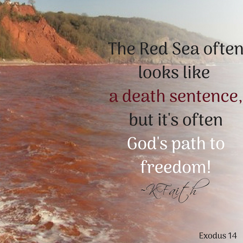 The Red Sea often looks like a death sentence, but it's likely God's path to freedom! ~KFaith (#Exodus 14) #faithinGod God FaithStrong #quoteoftheday #freedom<br>http://pic.twitter.com/cMU2Fa43wX
