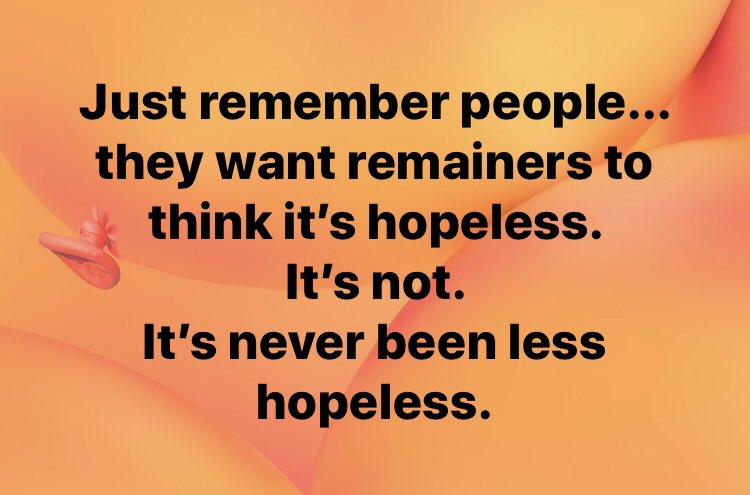 Just remember people... they want remainers to think it's hopeless. It's not. It's never been less hopeless. #StopBrexit <br>http://pic.twitter.com/MGjmTel4w0