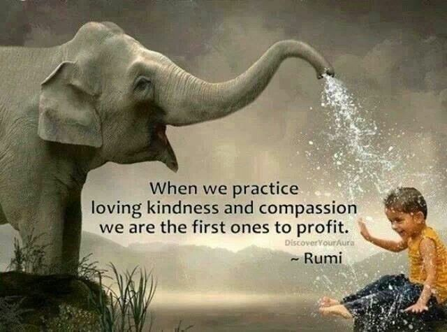 When We Practice Loving Kindness And Compassion We Are The First Ones To Profit. ~ Rumi  #RainKindness #BeKind #waytolive #ThoughtForTheDay #quotestoliveby #JoyTrain  #GoldenHearts  #FamilyTrain #StarfishClub  #ThinkBIGSundayWithMarsha<br>http://pic.twitter.com/07dclG7Ir5