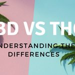 CBD vs. THC  https://t.co/jr7vOjwHdM  #CBD #cannabidiol