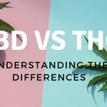 CBD vs. THC  https://t.co/Q7eC8Al0dR  #CBD #cannabidiol