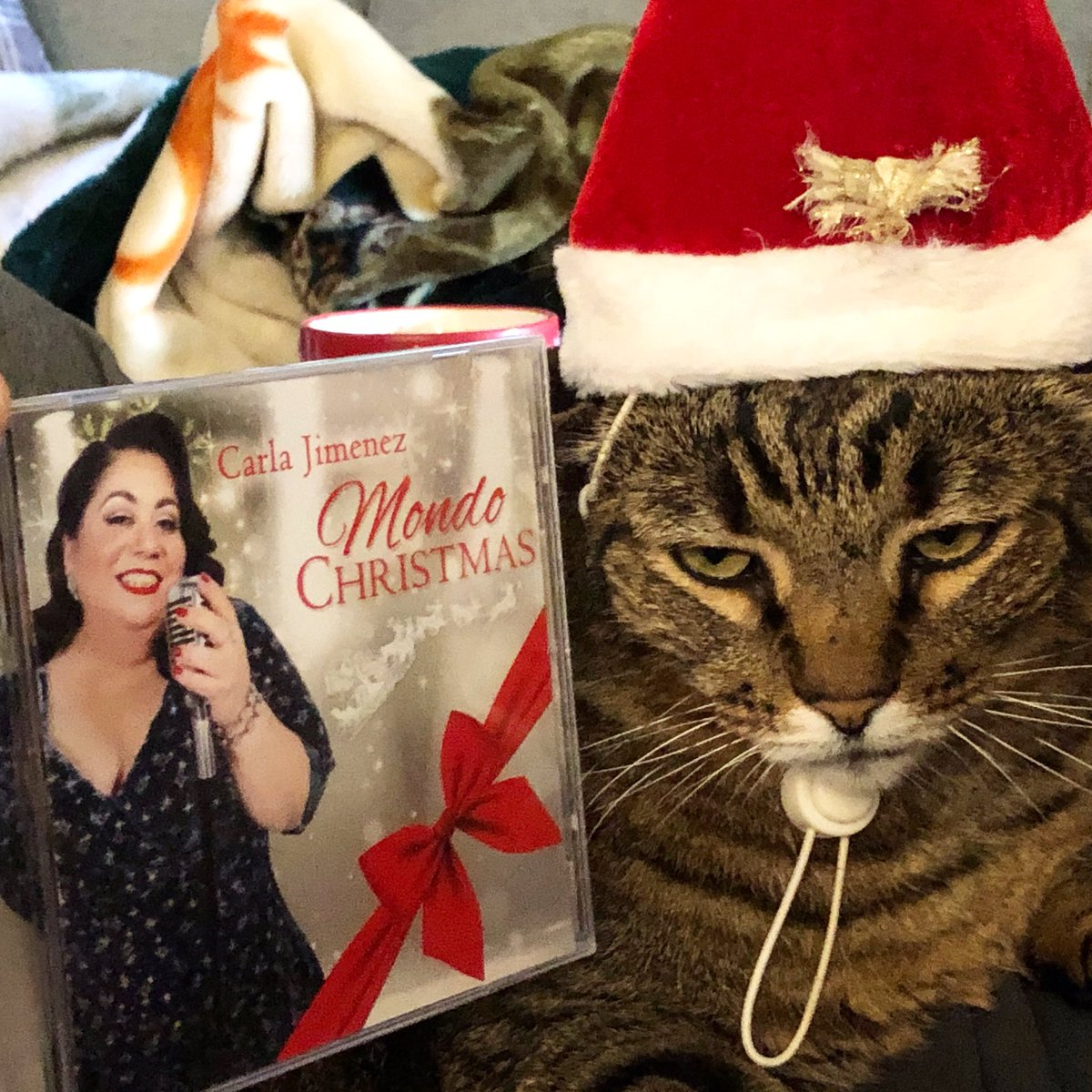 Santa Chester has obviously discovered the magic of Christmas, and now YOU can too! Thanks to @carlajimenez everyone can ring in the holidays with her new Christmas album! Download today!
