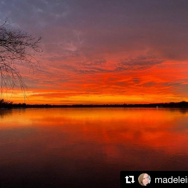 📷: @madeleine_fae ・・・ Tonight's sunset was a real 'pull over the car, make an illegal crossing and sprint as fast as possible through the snow to the lakefront to get a good vantage point' 🌅 . . . #nature #naturephotography #sunset #sunsetphotogr…