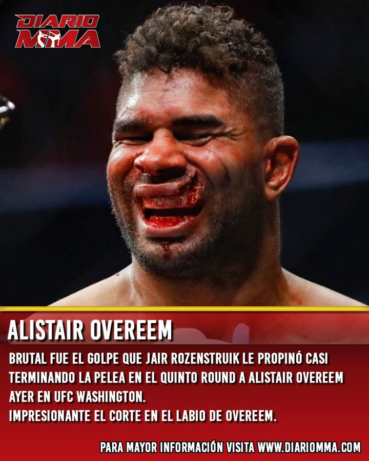 La pelea de MMA de moda ELP2UltXYAAdYlk?format=jpg&name=900x900