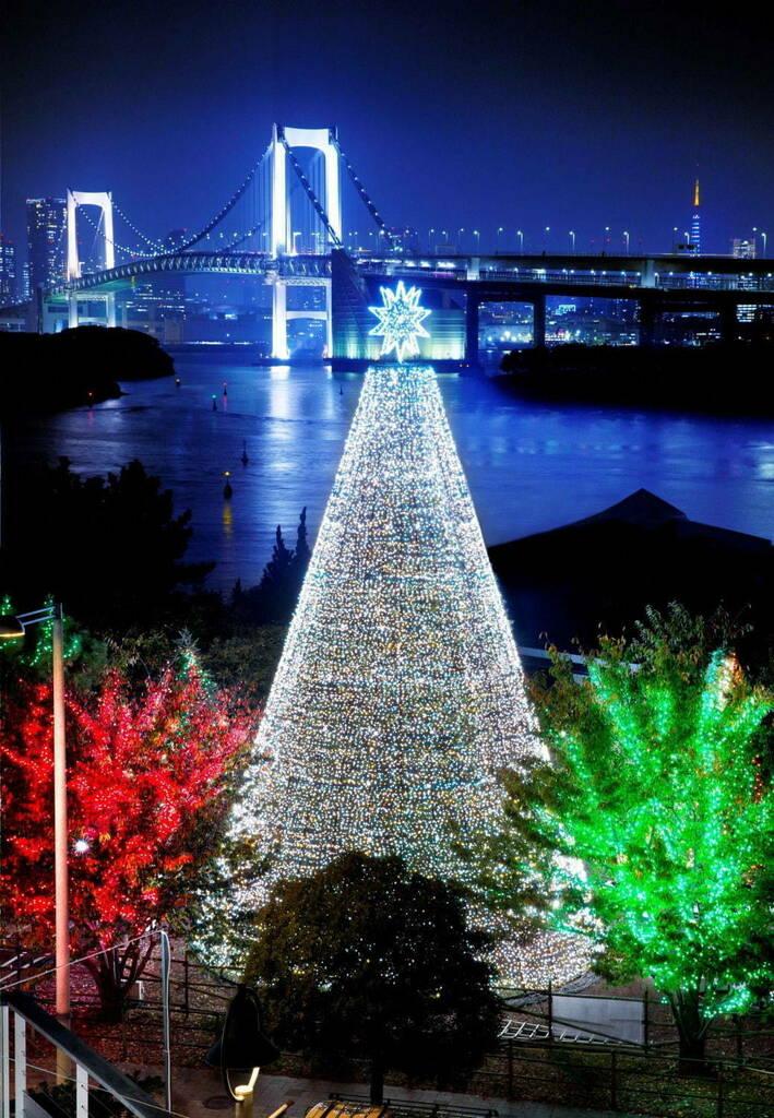 "Tumblr(Photo)Updates   お台場イルミネーションが冬バージョンに、降り積もる""雪""のような白い光&クリスマスツリー  https://ift.tt/2DYI0jTpic.twitter.com/dWe6b2v7b5"