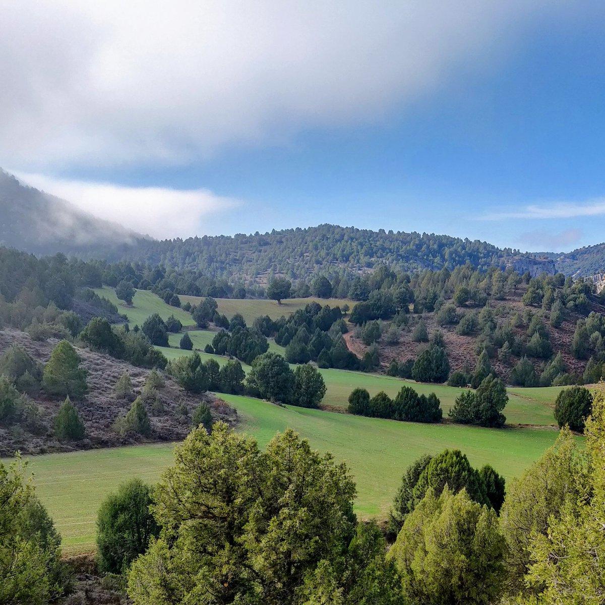 Qué sería del paisaje sin el paisanaje #COP25
