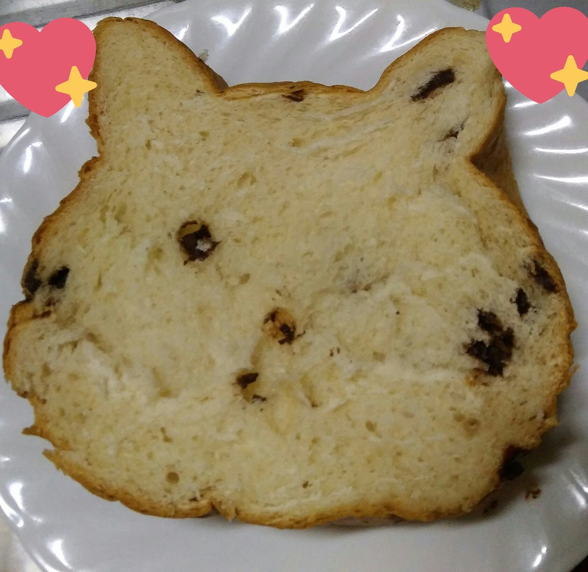 先日ねこねこ食パン(チョコ)いただきました♪ そのままと焼いたの食べたけど両方美味しかった(*´ω`*) https://t.co/F7HuHzZaqy