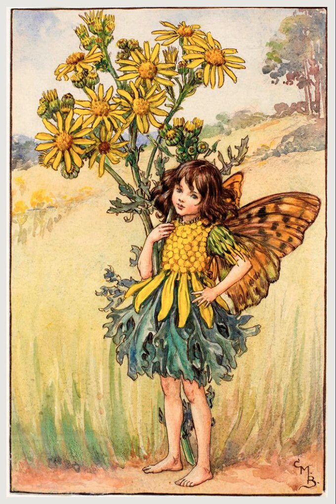 """""""I would with such perfection govern, sir, T'excel the golden age."""" The Tempest, Act 2, Sc 1  #ShakespeareSunday  Image: The Ragwort Fairy, by Mary Cicely Barker, 1920s <br>http://pic.twitter.com/l3tixJux7e"""
