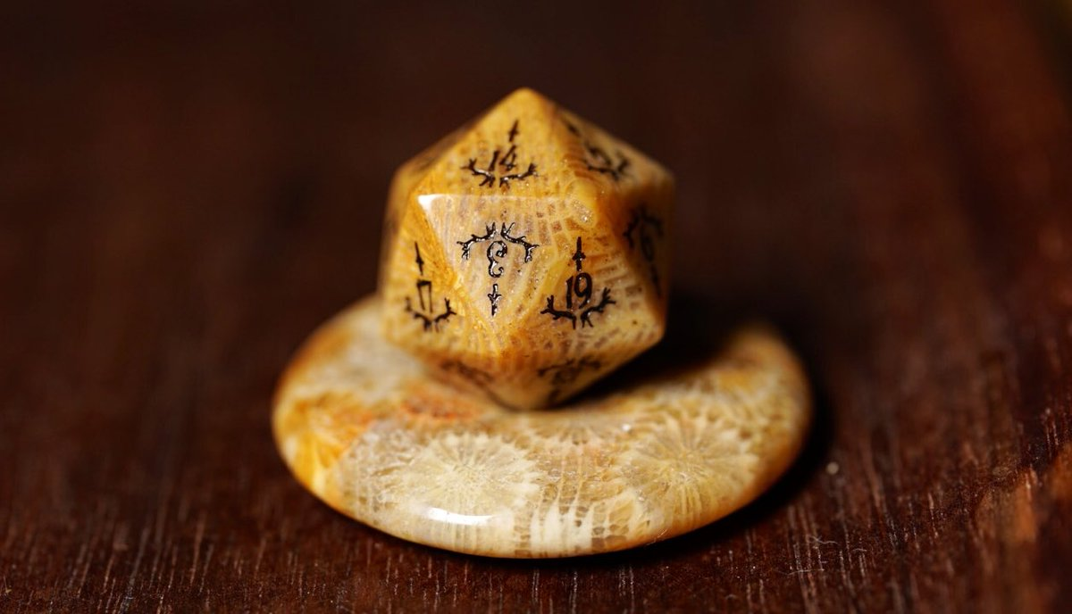 Ancient fossil collection 🤯🧐 #dnd #dice #ttrpg #dungeonsandragons