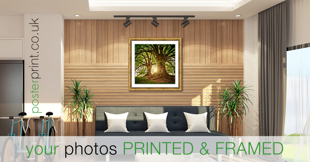 High quality #picture #framing from your #photos in a unique range of #square #photo sizes. 😀😀😀#photobook #photoftheday #photographerlife #photographs #photographic #photoshoots#awesome_earthpix #naturewalk #instanature #treestagram https://bestprints.uk/square-photo-frames…