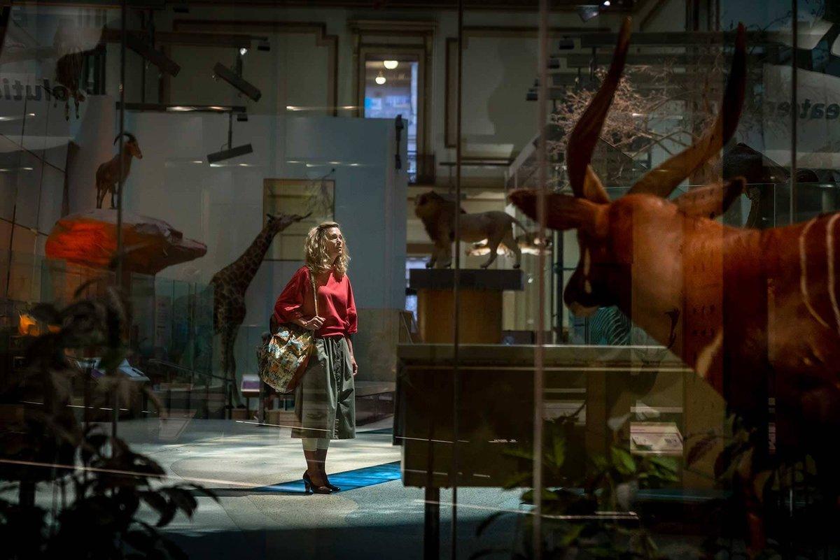 Kristen Wiig as Barbara Ann Minerva / Cheetah
