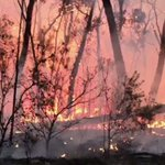 Image for the Tweet beginning: Australia braces for more fires