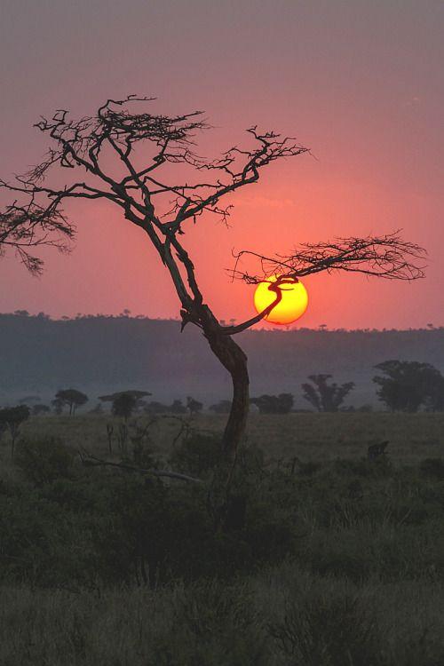 Good morning dear friends ! 👋👍💙 #photography #photo #PHOTOS #morning #sunrise