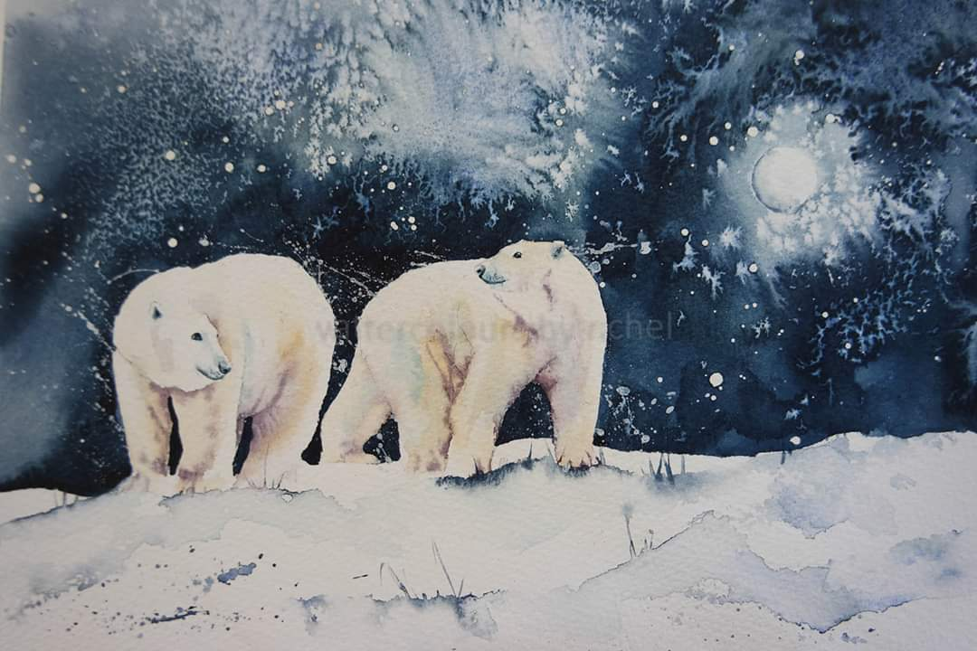 WatercoloursbyRachel Advent Calendar Day 9 Polar Bears #watercolor #adventcalendar #ChristmasCountdown #endangeredspecies #polarbear #watercolorpainting #BigArtBoost #thedailysketch #watercolour #wildlife #wildlifeartist #movement #painting #art #artist #moonlight #night