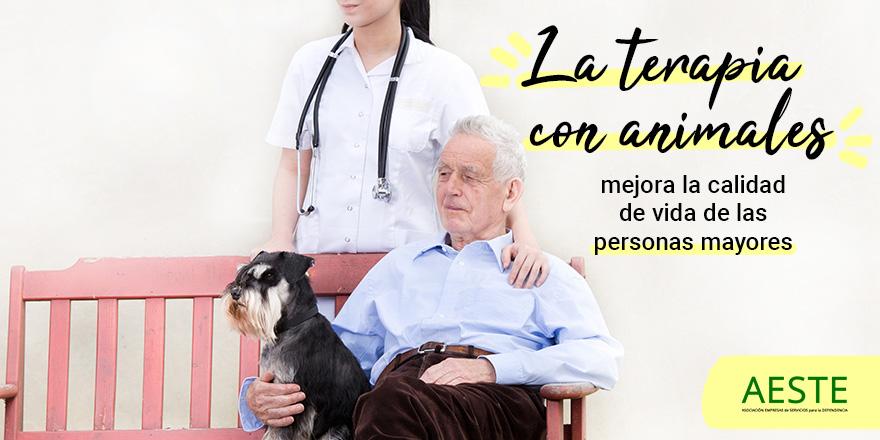 test Twitter Media - 🐶¿Cuáles son las ventajas de la terapia con animales en #PersonasMayores?  🔹Fomenta la actividad física. 🔹Trabaja la estimulación cognitiva y sensorial. 🔹Favorece la expresión de emociones.  🔹Disminuye la soledad. 🔹Promueve la conversación. 🔹Activa la memoria. https://t.co/EQMEUdoACv